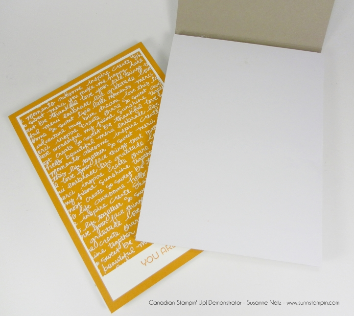 Stampin' Up! In Color DSP stack